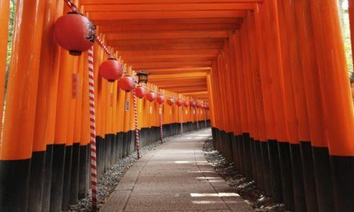 Zdjęcie JAPONIA / Honshu / Kyoto / Fushimi Inari