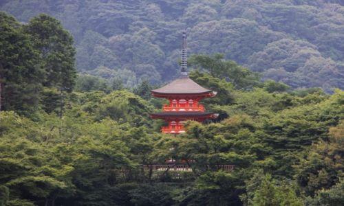 Zdjęcie JAPONIA / Kyoto / Kyoto / Pagoda