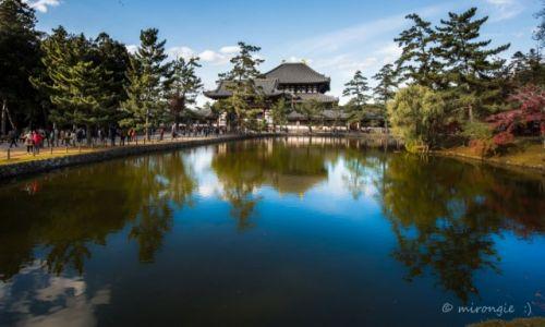 Zdjęcie JAPONIA / Kioto / Nara /  Świątynia Todai-ji