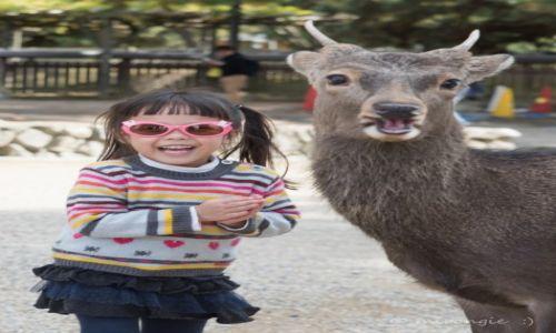 Zdjęcie JAPONIA / Tokio / Nara / Znajdź 10 różnic