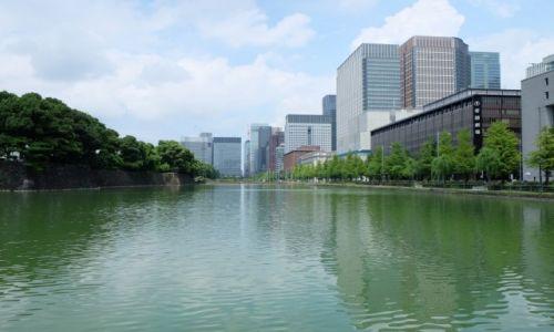 Zdjęcie JAPONIA / Honsiu / Tokio / Park Cesarski z widokiem na szklane centrum Tokio