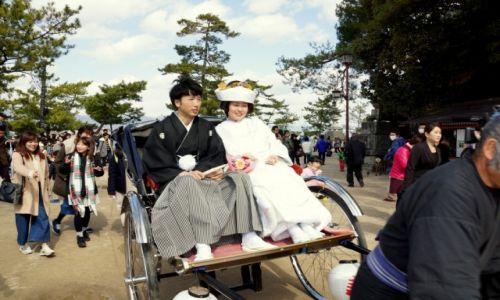 Zdjęcie JAPONIA / okolice Hiroszimy / Miyajima / Japoński ślub c.d.