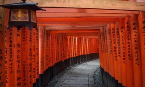 Zdjecie JAPONIA / Kyoto / Kyoto / Fushimi Inari-t