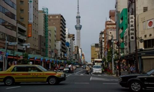 Zdjecie JAPONIA / Tokio / Asakusa / Piękno codzienn