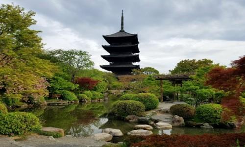 Zdjęcie JAPONIA / - / Kyoto / To-ji temple