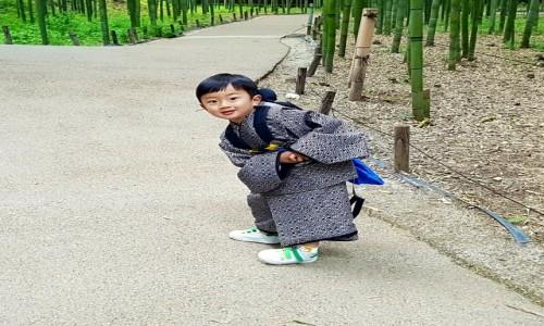 Zdjecie JAPONIA / - / Kyoto-Arashiyama / Z zadatkami na modela...