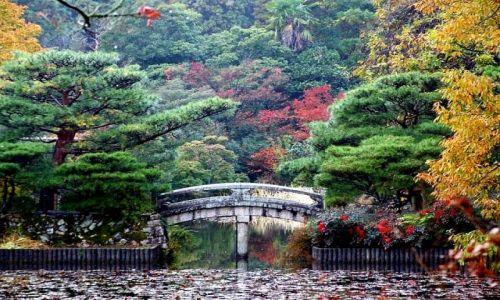 Zdjecie JAPONIA / Kioto / Kioto / Japoński Ogród