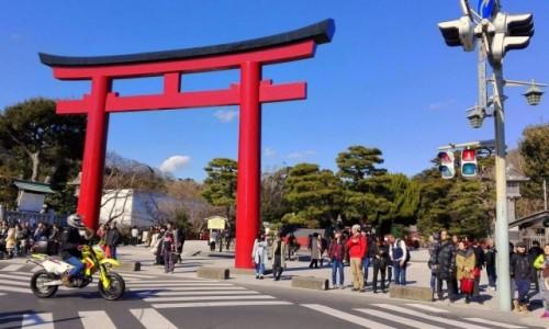 JAPONIA / Prefektura Kanagawa / W drodze do Kotoku-in / Kamakura