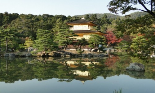 Zdjęcie JAPONIA / Kioto / Ogród japoński / ogród