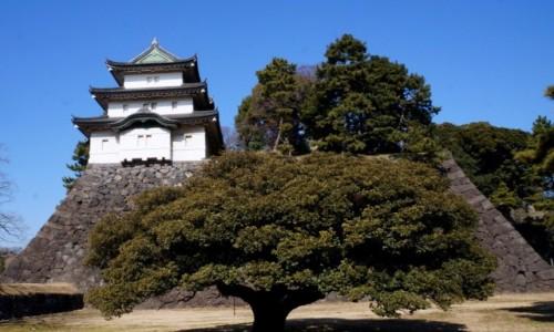 Zdjecie JAPONIA / Tokio / Chiyoda / Kontrasty