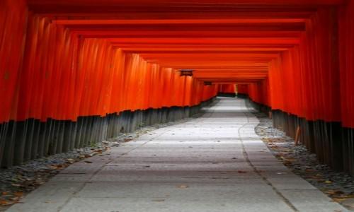 Zdjecie JAPONIA / Kioto / Fushimi Inari Taisha / Kioto