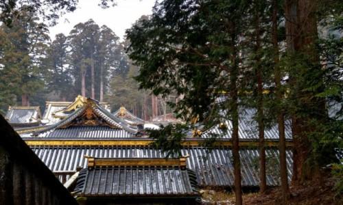 Zdjęcie JAPONIA / Honsiu / Nikko / Nad dachami świątyń