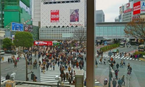 JAPONIA / Tokio / Shibuya / Prawdziwe skrzyżowanie