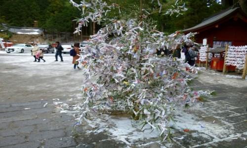 Zdjecie JAPONIA / Nikko / Świątynia Toshogu / Czy wszystkie się spełnią?