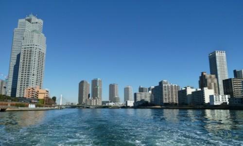 Zdjęcie JAPONIA / Tokio / Sumida / Oglądając z