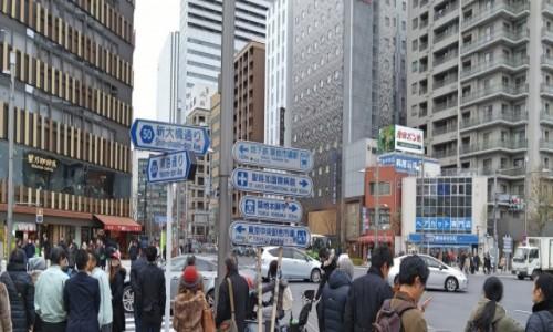 Zdjecie JAPONIA / Tokio / Tsukiji / A teraz gdzie idziemy...