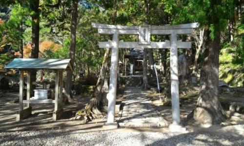 Zdjecie JAPONIA / kumano kodo / kii tanabe / japonia trekking