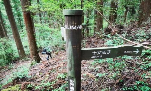 Zdjecie JAPONIA / kumano kodo / kii tanabe / trekking japonia
