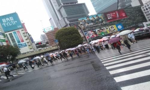 Zdjecie JAPONIA / Tokyo / Shibuya / Shibuya
