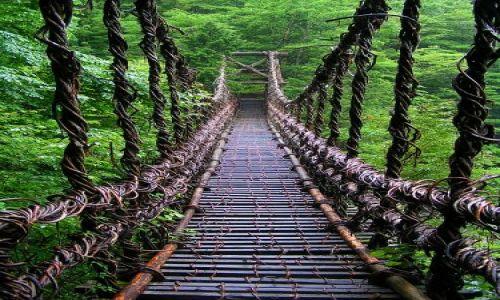 Zdjecie JAPONIA / -Shikoku / Iya Valley / Most z pnączy w