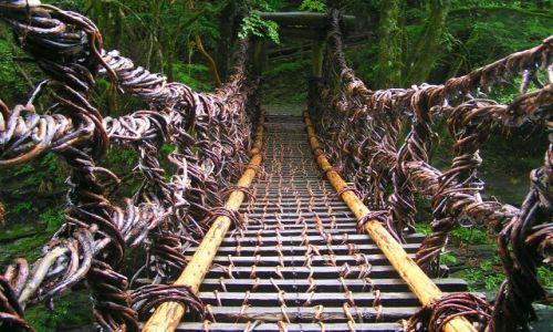 Zdjecie JAPONIA / -Shikoku / Iya Valley / Most z pnączy winorośli
