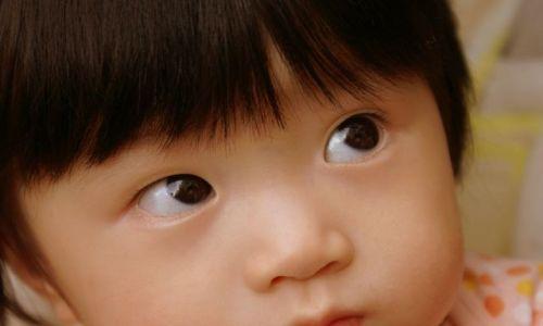 Zdjecie JAPONIA / brak / osaka / mały Yuma