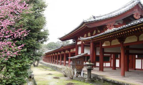 JAPONIA / brak / NARA / Japonia - NARA - okolice światyni TODAI-JI