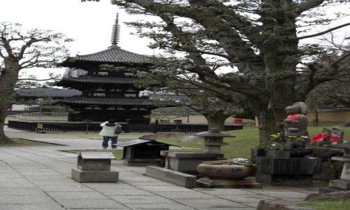 Zdjecie JAPONIA / brak / NARA / Japonia - NARA - Pagoda