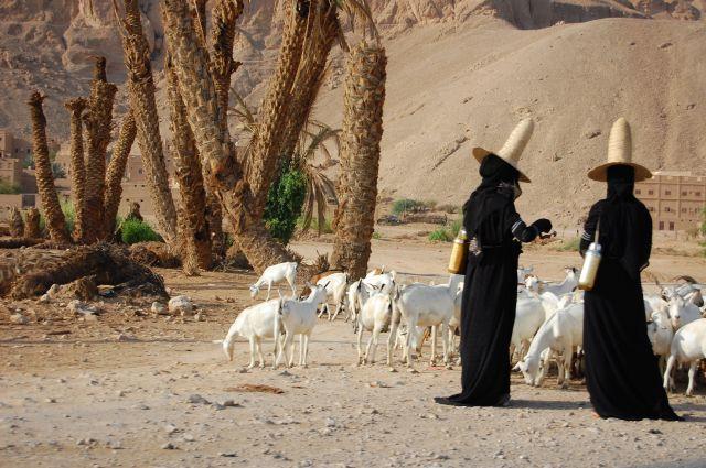 Zdjęcia: w drodze, Wadi Hadramaut, czarownice, JEMEN