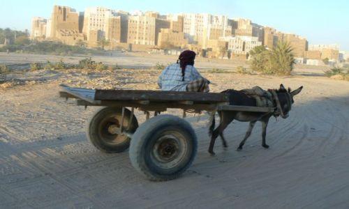 Zdjęcie JEMEN / - / Wadi Hadramaut / W drodze do pracy.