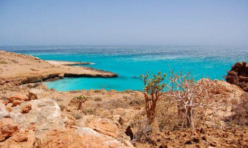 Zdjecie JEMEN / Socotra / przy plaży / błękit