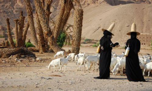 Zdjecie JEMEN / Wadi Hadramaut / w drodze / czarownice