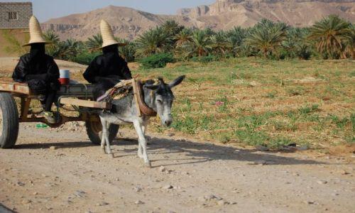 Zdjecie JEMEN / Wadi Hadramaut / w drodze / Czarownice 2
