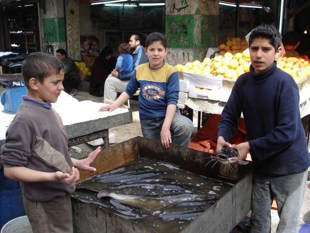 Zdjęcia: Amman, moze rybke?, JORDANIA