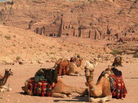 Zdjęcia: Petra, Krajobraz z wielbładami, JORDANIA