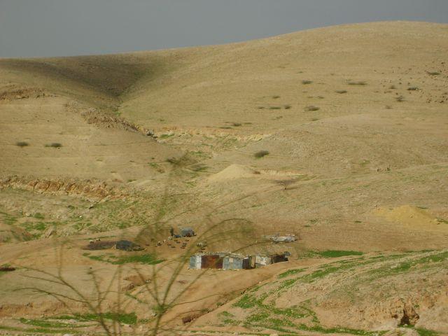 Zdj�cia: okolice Ammanu, Osada Beduin�w, JORDANIA