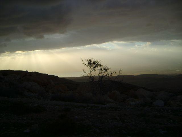Zdjęcia: okolice Ammanu, O świcie, JORDANIA