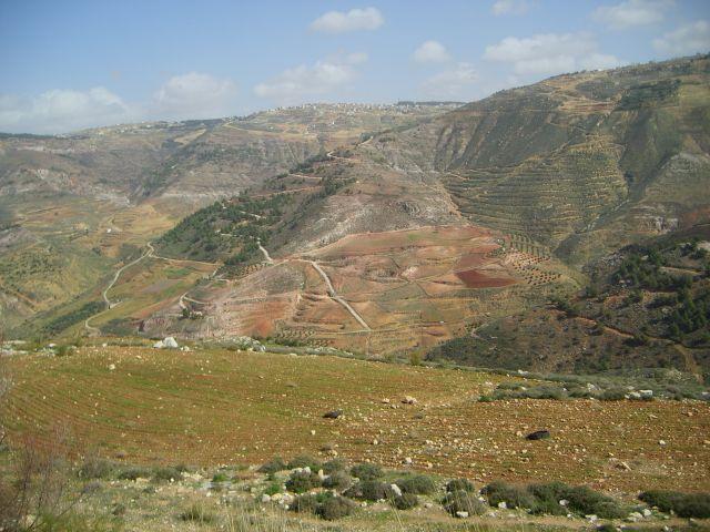 Zdj�cia: okolice Ammanu, Dolina Morza Martwego, JORDANIA
