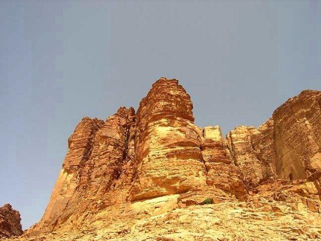 Zdjęcia: Okolice Wadi Rum,  Bogactwo natury, JORDANIA