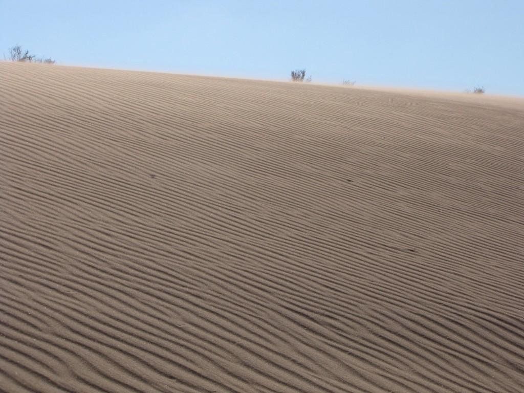 Zdjęcia: Południowa Jordania, Południowa jordania, Wiatr i piasek, JORDANIA
