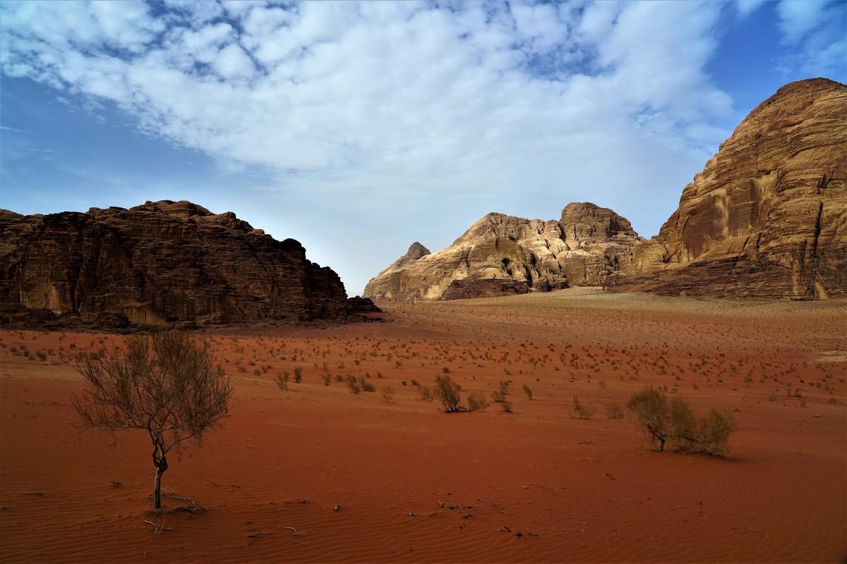 Zdjęcia: Pustynia Wadi Rum, Wadi Rum, Kolory pustyni, JORDANIA