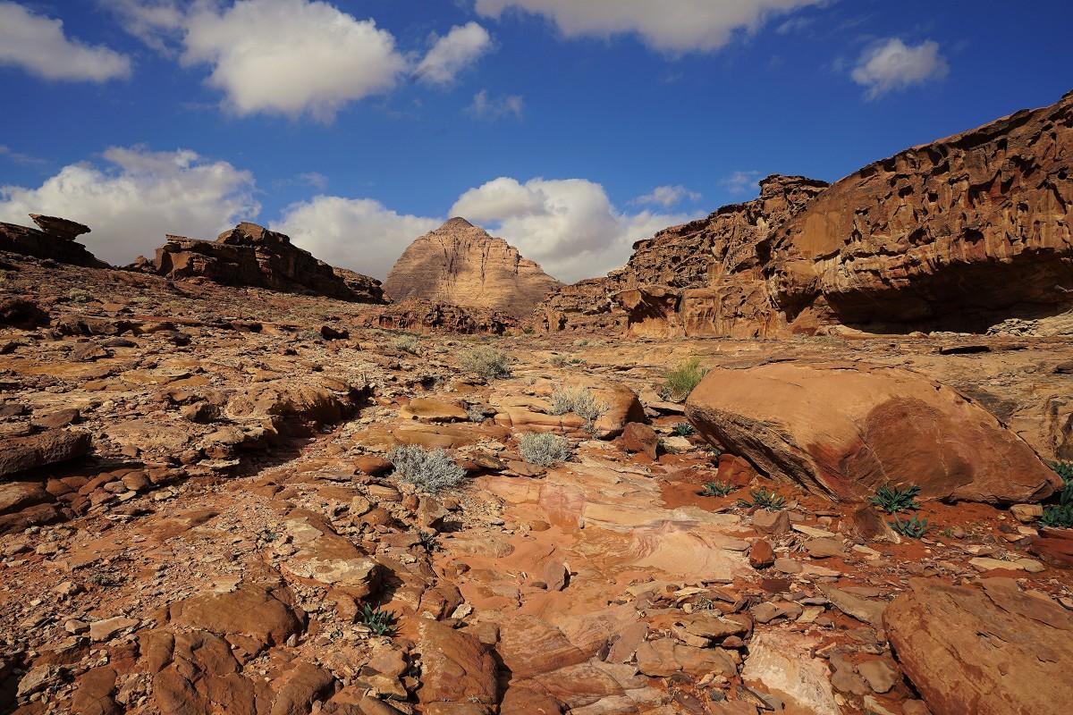 Zdjęcia: ., Wadi Rum, W pełnej krasie, JORDANIA