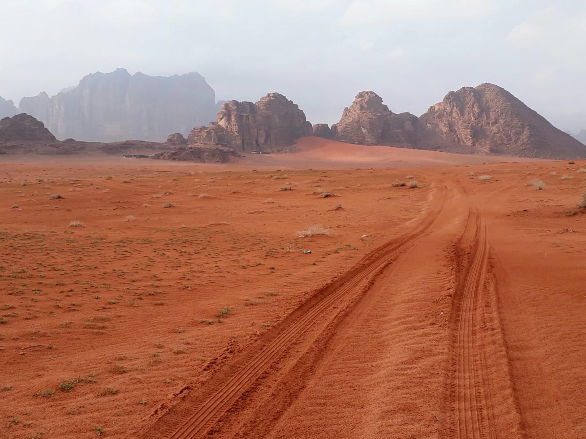 Zdjęcia: Wadi Rum , Wadi Rum , Na pustyni, JORDANIA