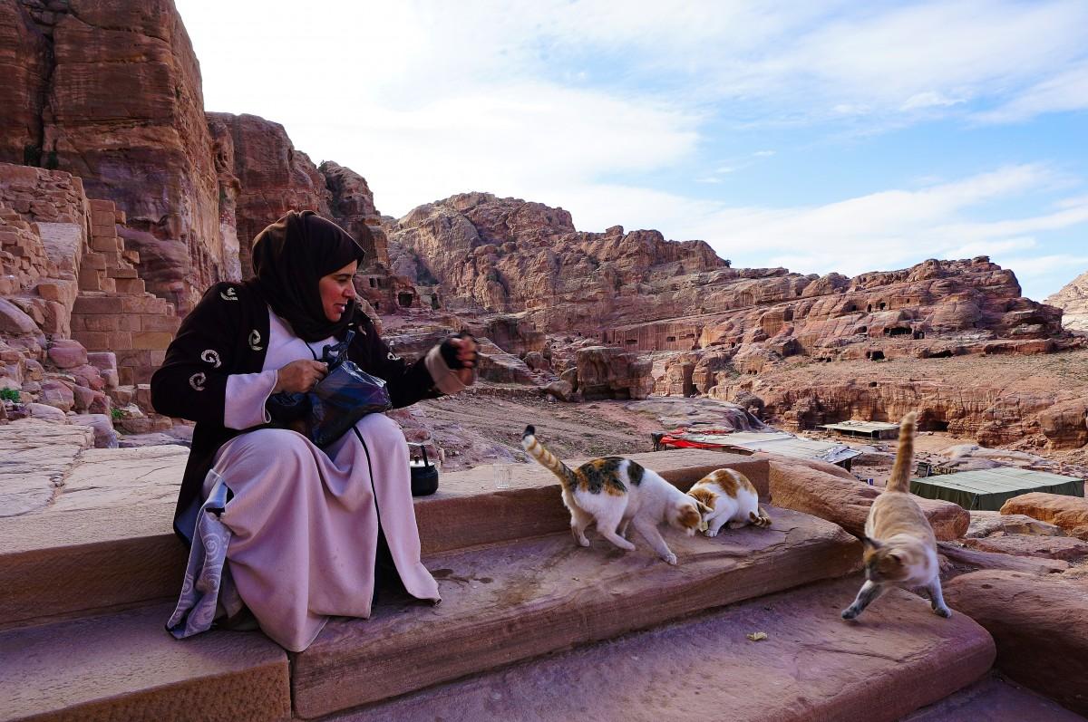Zdjęcia: Petra, Muhafaza Ma'an, Karmicielka kotów, JORDANIA