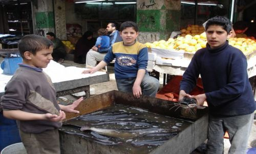 Zdjecie JORDANIA / brak / Amman / moze rybke?