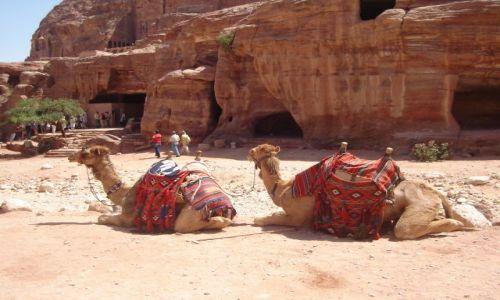 JORDANIA / Pd. zach. Jordania / Petra - Królestwo Nabatejczyków. / Moja Jordania :)