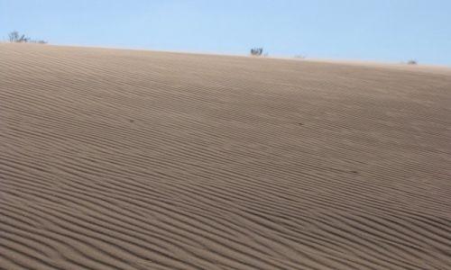 JORDANIA / Południowa jordania / Południowa Jordania / Wiatr i piasek
