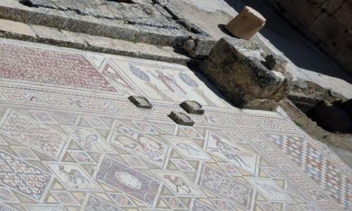 Zdjęcie JORDANIA / - / ??? / Mozaika wczesnochrześcijańska