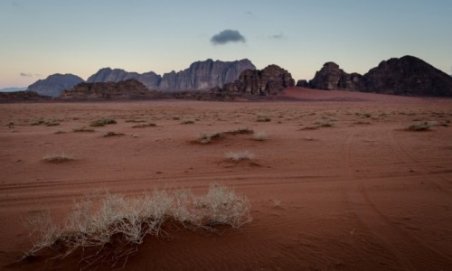 Zdjecie JORDANIA / Wadi Rum / pustynia / świt...