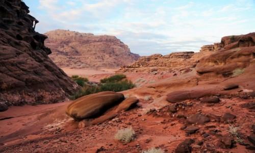 Zdjęcie JORDANIA / Wadi Rum / . / Różnorodność na pustyni